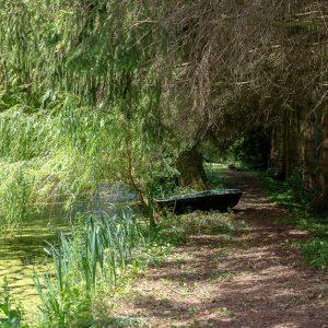 Le sentier qui longe l'étang proche du Moulin du Loison, chambres et table d'hôtes